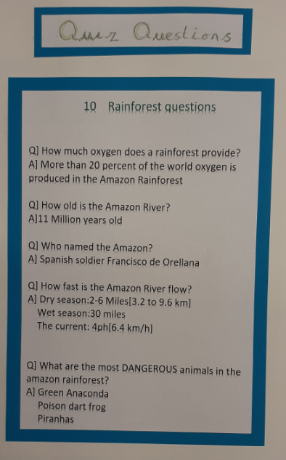 Rainforest quiz 1